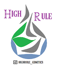 High Rule Genetics